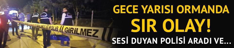 Ankara'da ormanda sır cinayet