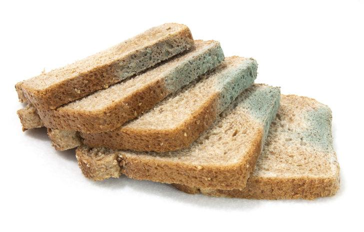 Ekmeğin küflü yerini koparıp gerisini yemek tehlikeli mi?