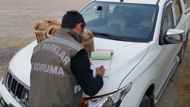 Van'da keklik avcılarına ceza