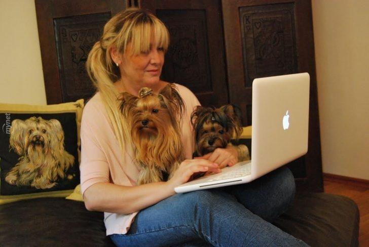 Yorkie'lere Fısıldayan Kadın Selmin Akdağ ve 16 Tatlış Yorkshire Terrier!