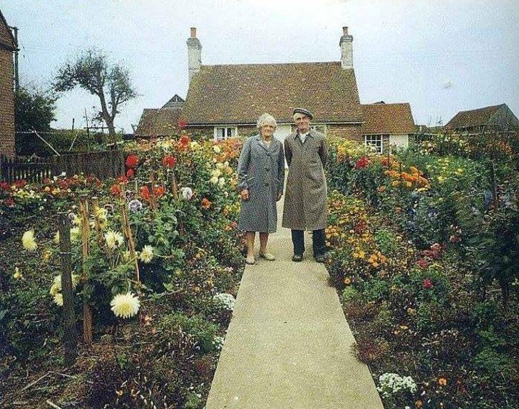 Her Mevsim Aynı Fotoğrafı Çektiren Yaşlı Çiftin Hüzünlü Hikayesi