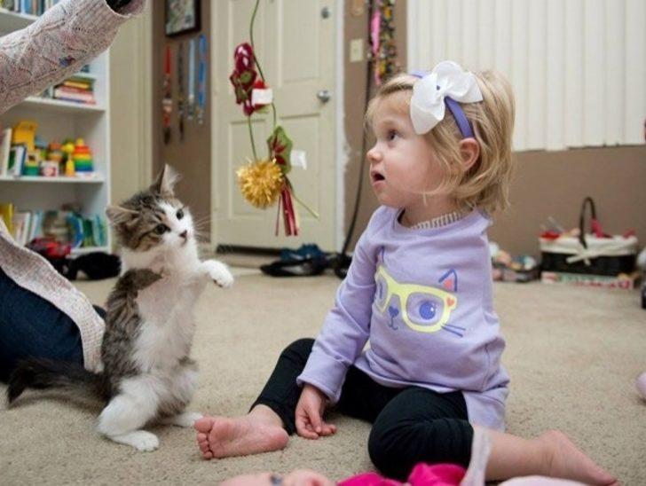 Kolu Kesilen Küçük Scarlette ve 3 Bacaklı Kedisinin Dostluğu Görülmeye Değer!