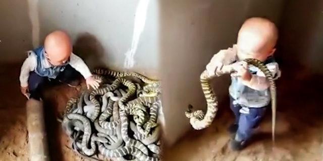 Yılanları yuvasından çıkaran cesur çocuğun görüntüleri sosyal medyada ilgiyle izlendi