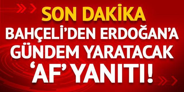 Bahçeli'den Erdoğan'a gündem yaratacak 'af' yanıtı!